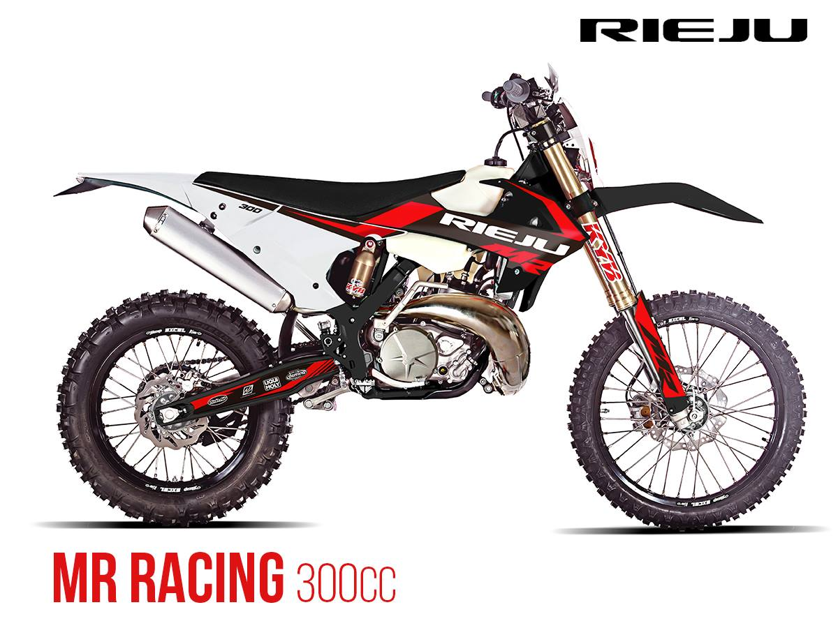 motorcycle RIEJU MR300 Racing
